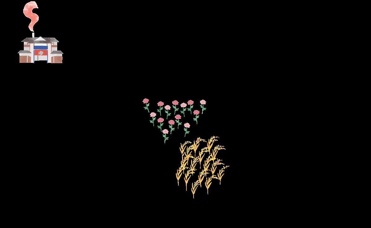 お花畑と稲
